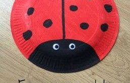 Paper plate Ladybird More