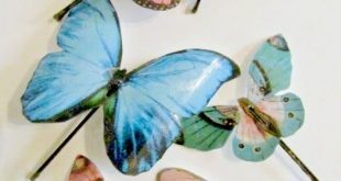 Pretty Butterfly Pins