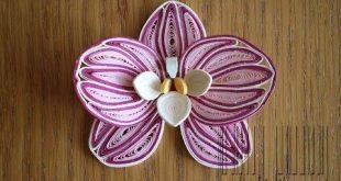 Quilled Orchid - Orchidée en papier - Orquídea en papel